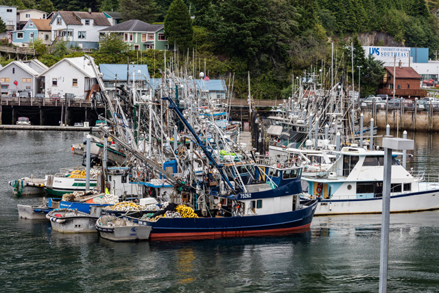 victoria-seafood-wholesaler